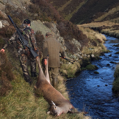 Deer hunting in Scotland - Hind hunting