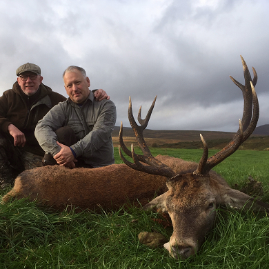 Deer hunting in Scotland - Red Stag hunting
