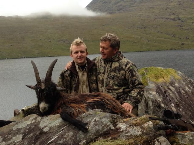 Wild Goat - Ireland