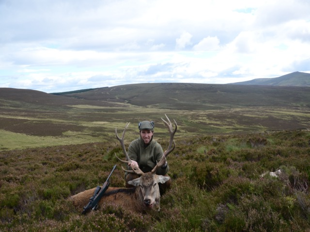 Red Stag, Season 2013