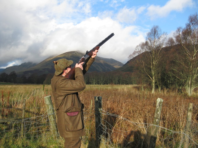 Driven Pheasant / Partridge shooting