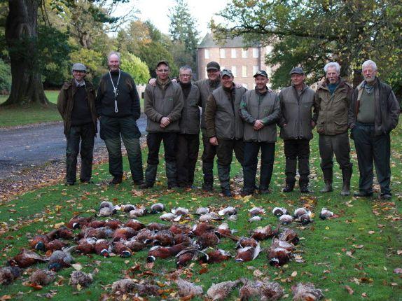 Driven Pheasant - Partridge