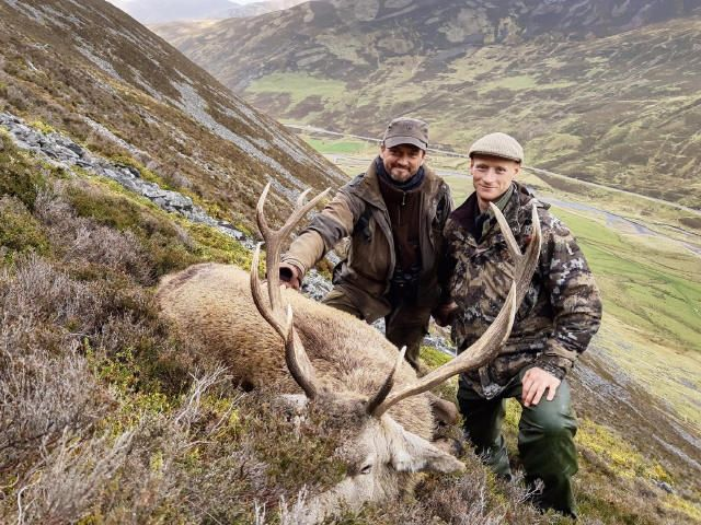 Red Stag, Season 2019